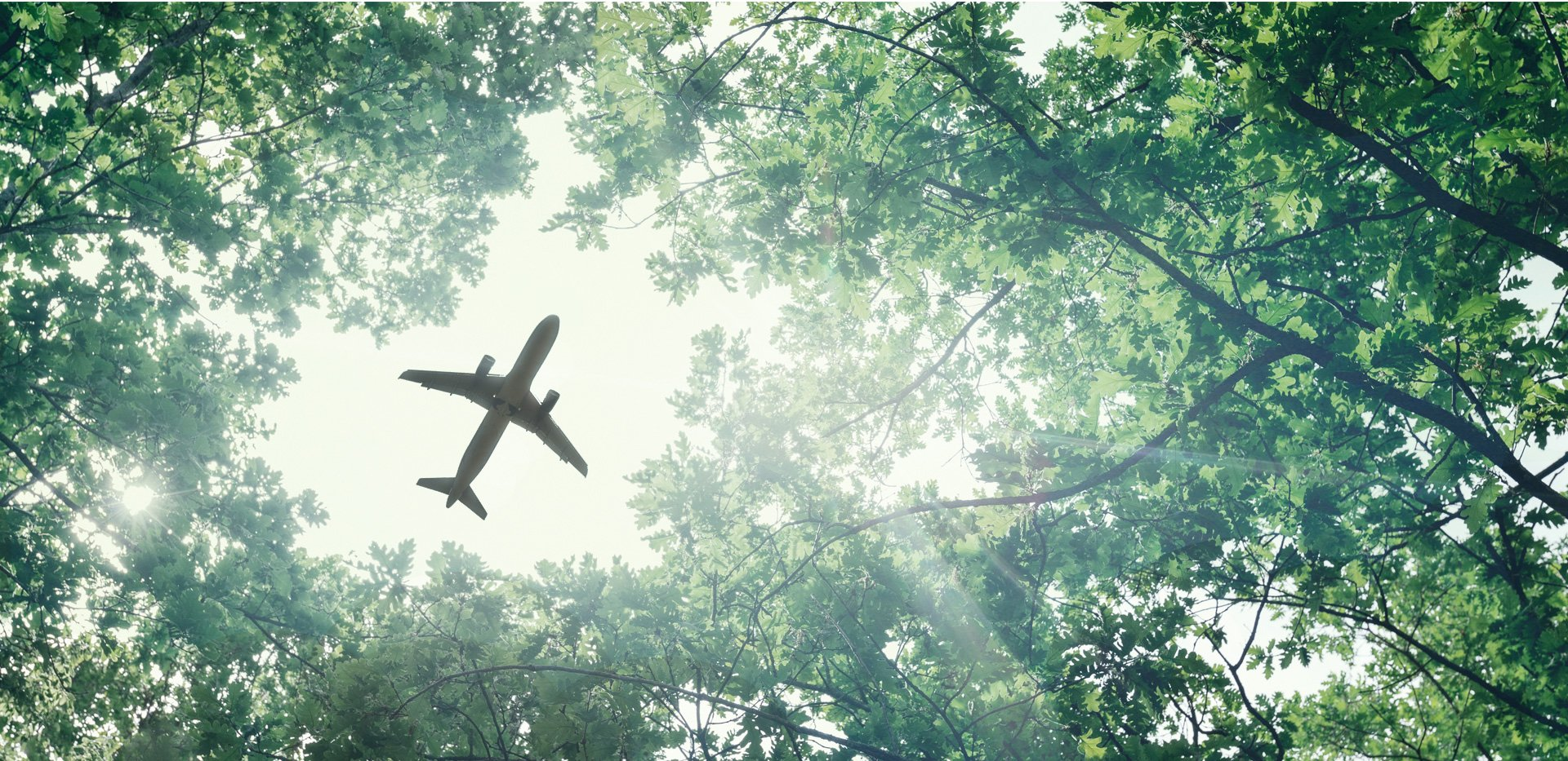 air transport management sustainability